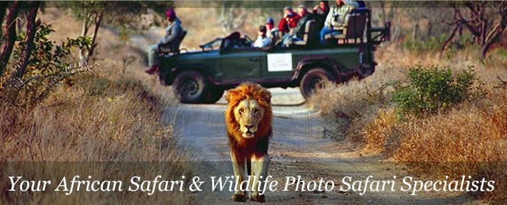 Kings Pool Camp Safari In Lintandi And Selinda Woodland